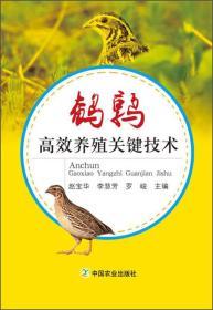鹌鹑高效养殖关键技术