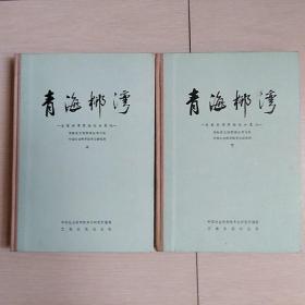 青海柳湾(上下)〈布脊精装本〉