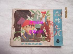 森林之战——少年连环画库(卢德平,何玉英绘画)