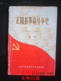 【地方史料】1989年版:正阳县革命斗争史(1926.7--1949.10)(上卷)