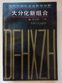 大分化新组合:当代中国社会各阶层分析