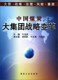 9787502043490中国煤炭大集团战略变革