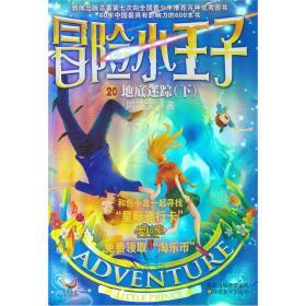儿童文学:冒险小王子 地底迷踪