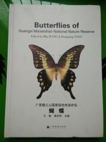 广西猫儿山国家级自然保护区 蝴蝶