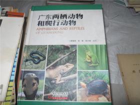 广东两栖动物和爬行动物