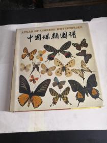 中国蝶类图谱,精装