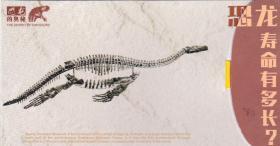 自贡<b>恐龙</b>邮局官方<b>明信片</b>《<b>恐龙</b>的奥秘-<b>恐龙</b>化石》