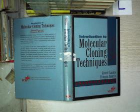 molecular cloning techniques(01)