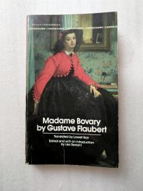 Madame Bovary by Gustave Flaubert(福楼拜《包法利夫人》)德文原版 36开