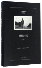 黑铁时代(珍藏版)/王小波全集
