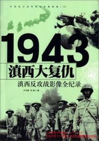 滇西大复仇:滇西反攻战影像全纪录
