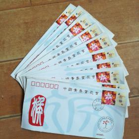 2004年中国青岛赏花会纪念封10枚合售