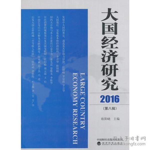 大国经济研究2016 (第八辑)