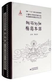 中国彝族梅葛史诗丛书:梅葛本源