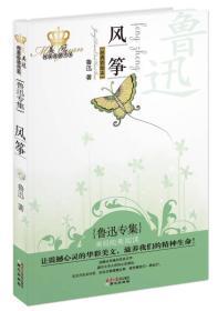 风筝:美冠纯美阅读书系