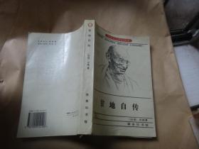 甘地自传--我体验真理的故事(世界名人传记丛书)