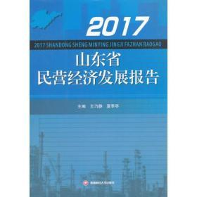 2017山东省民营经济发展报告