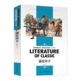 学生新课标必读·世界经典文学名著(名师精读版):骆?#38556;?#23376;