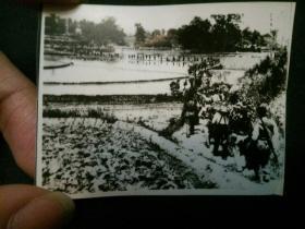 解放军、八路军大转移 革命文物档案照片