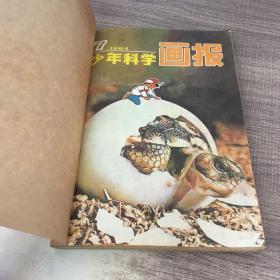 合订本 1984少年科学画报7.8.9、智力世界第四辑+32.33.34.35   如图 8本合售