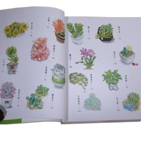a教程彩铅系列多肉教程彩铅画植物书飞乐鸟彩视频的图解教程魔方图片