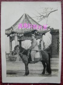 老照片:1956年12月23日,徐州云龙山,军人——罗文元同志骑马照。1957年赠秦玉英。【陌上花开系列】