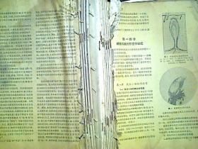 中医杂志1964年1-12合订