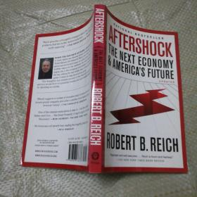 Aftershock: The Next Economy and Americas Future