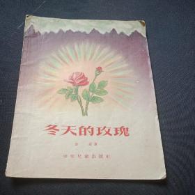 冬天的玫瑰   童话诗集子