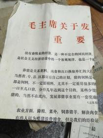 公告:毛主席关于发展畜牧业的重要指示