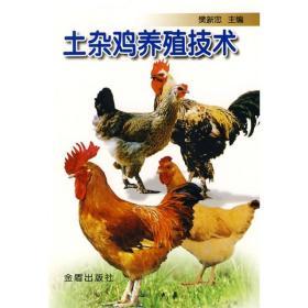 土杂鸡养殖技术
