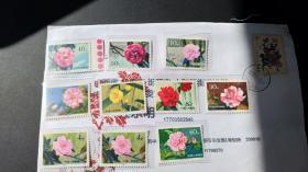 T37山茶花邮票一套10枚保真品好