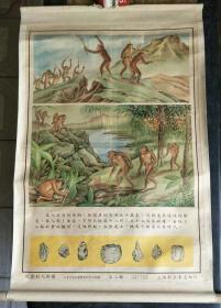 历史教学挂图一轴.从猿到人挂图(第八图)【有】
