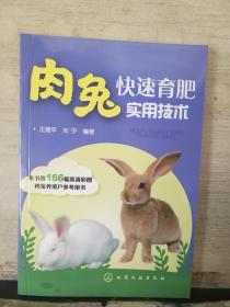 肉兔快速育肥实用技 术
