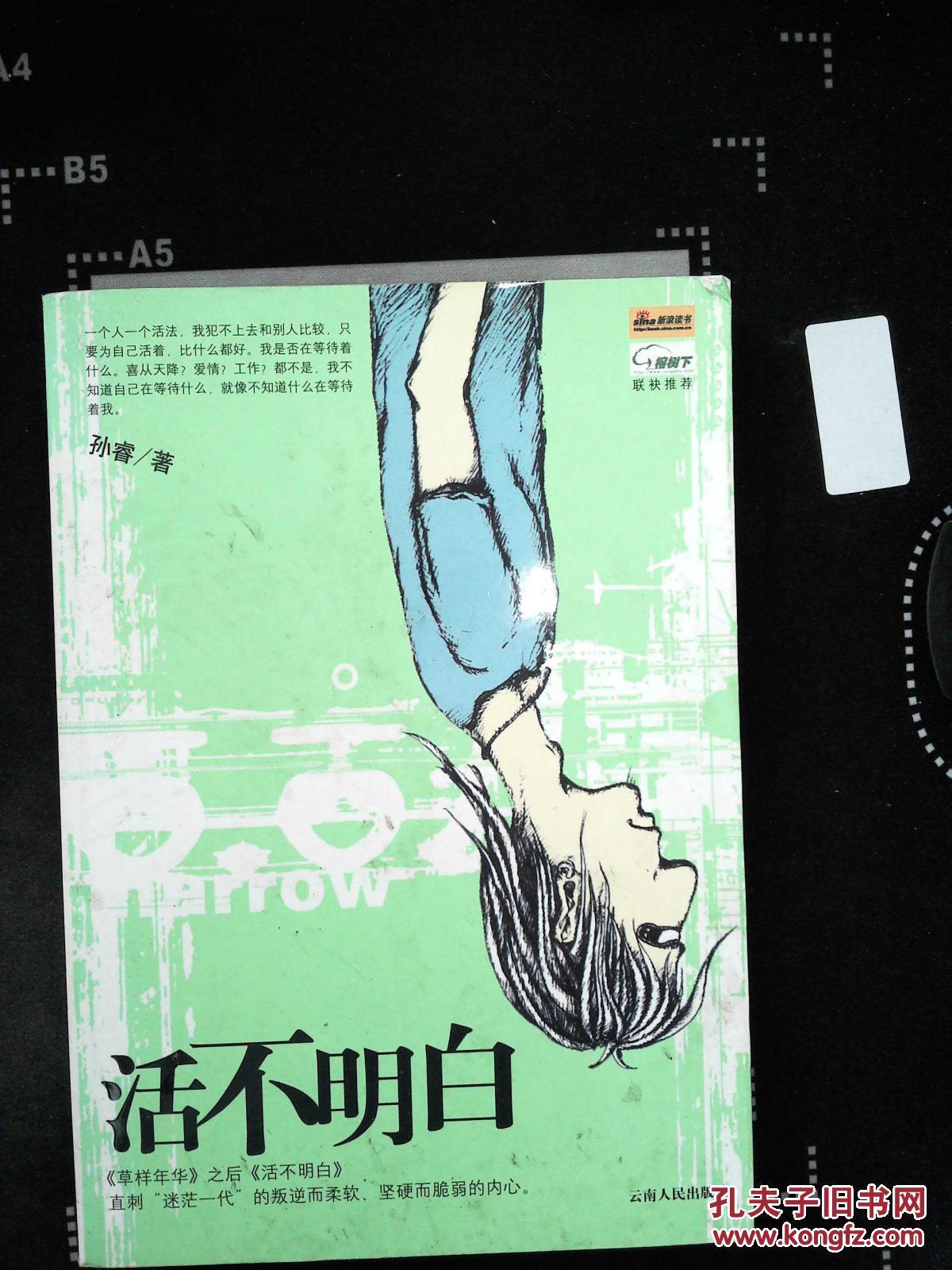 活不明白电子书下载_活不明白_孙睿_孔夫子旧书网