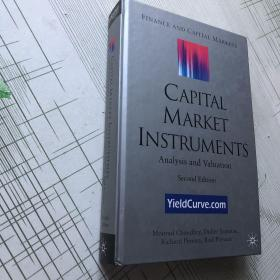 Capital Market Instruments Analysis and Valuation 资本市场工具分析与价值评估 精装