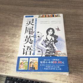 灵犀英语 高中作文128+128篇 高中版