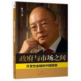 开发性金融的中国探索-政府与市场之间