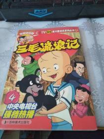 三毛流浪记.4:央视动画版