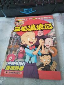 三毛流浪记.6:央视动画版