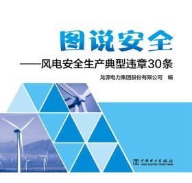 风电安全生产典型违章30条