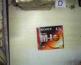 SONY DVD-R 索尼刻录光盘  (04)