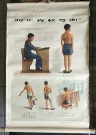 卫生和保健教学挂图一轴:人体和保健(防止脊柱弯曲)【有】
