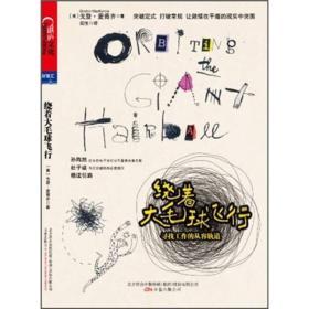 绕着大毛球飞行(比《引爆点》更稀奇古怪的一本书,30多年异类轨道+24则野性创意+ 12个故事+100多张精彩手绘图示)