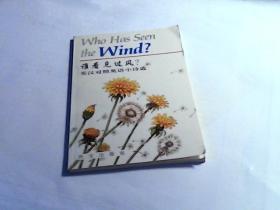 谁看见过风?:英汉对照英语小诗选
