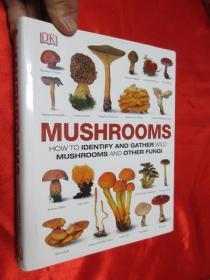 Mushrooms    (硬精装)   【详见图】