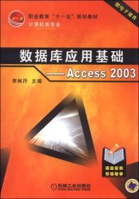 数据库应用基础:Access2003
