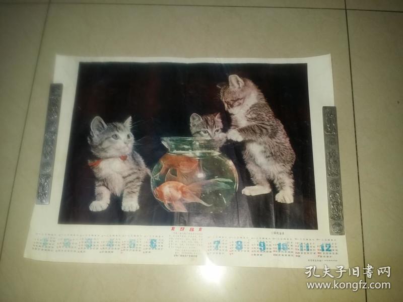三猫戏金鱼1981年历画