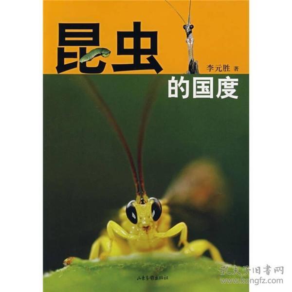 昆虫的国度