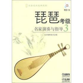 琵琶考级3名家演奏与指导